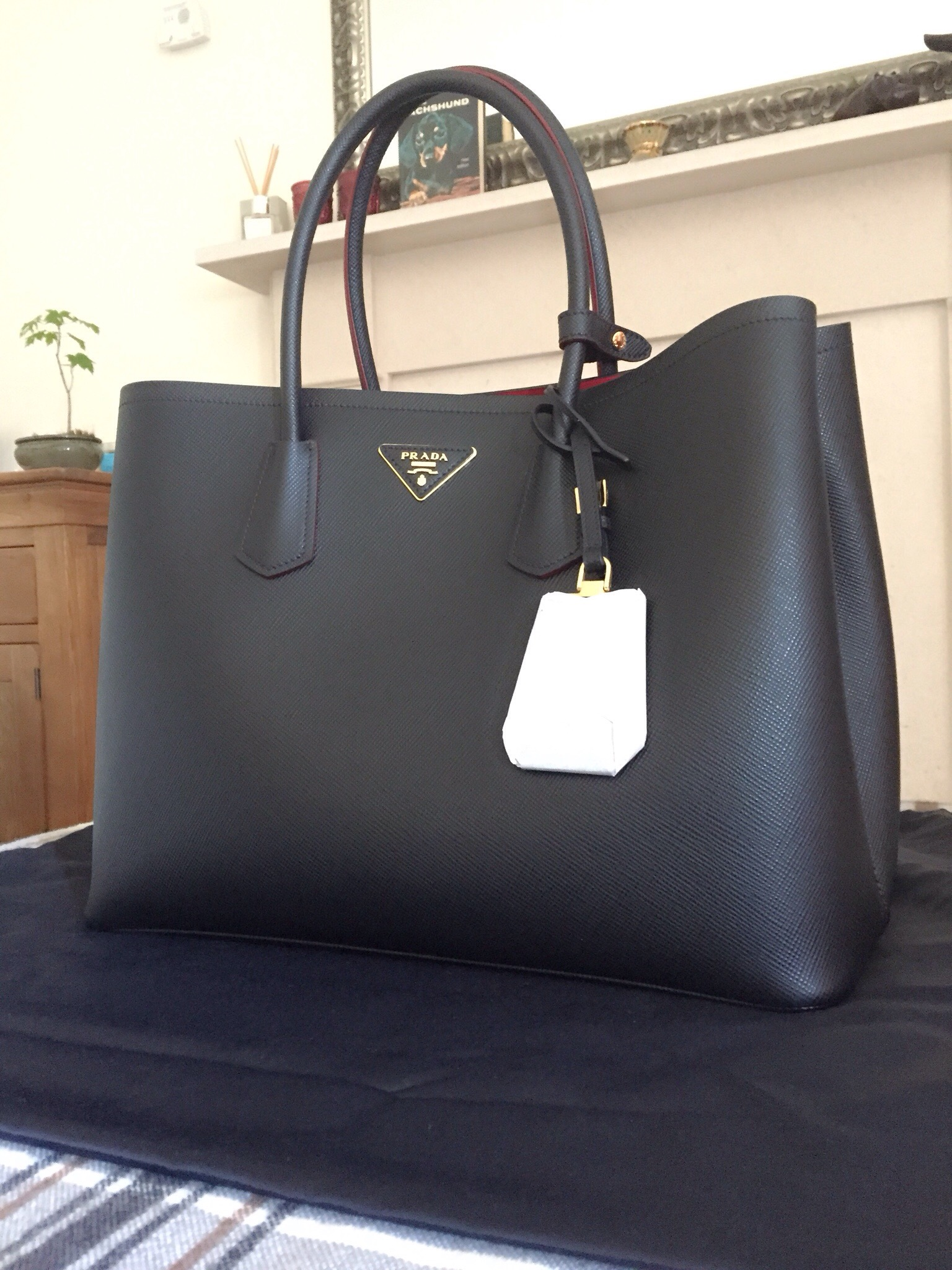 Prada Double Bag: reveal and mini review - Vikky Anna
